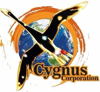 Cygnus Consulting Services
